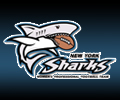 Sharks Football Logo http://www.hostedsports.com/wfa/league_teams_page.asp?league=wfa&season=2011&affiliation=hostedfootball&username=ffa